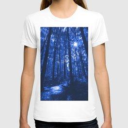 Shenandoah Blue T-shirt