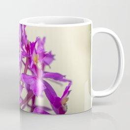Epi Pretty Lady Misumi Orchid Flowers Coffee Mug