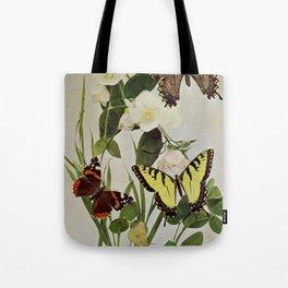 Vintage Butterflies in Nature Illustration (1899) Tote Bag