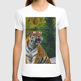 Amur Tiger Roaring T-shirt