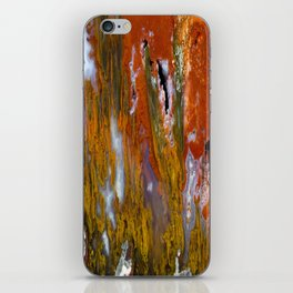 Cady Mountain Tube Agate iPhone Skin