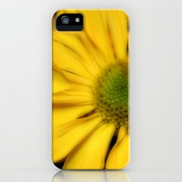 sunflowers2 iPhone Case