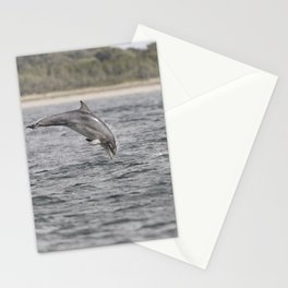 Playful young dolphin Stationery Cards