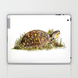 Mr. Turtle Laptop & iPad Skin