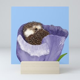 Sleeping Hedgehog In A Purple Tulip / Spring Decor Mini Art Print