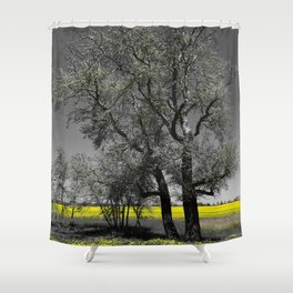The Beauty of Canola Fields Shower Curtain