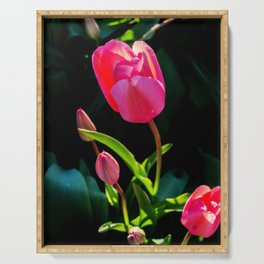 Spring tulips Serving Tray