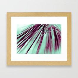 Pine Beauty Framed Art Print