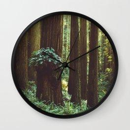 Fern Gully Wall Clock