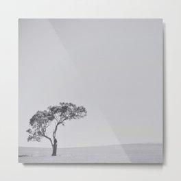 This little tree Metal Print