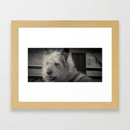 Glam Scout Framed Art Print