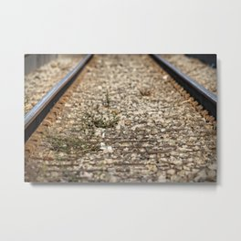 Train Tacks Metal Print