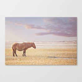'Alone' Canvas Print