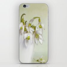 snowdrops N°1 iPhone & iPod Skin