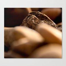 pebbles we carry Canvas Print
