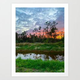 Bonita Sunset  Art Print