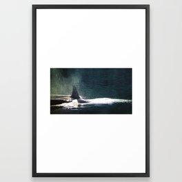 Orcas Framed Art Print