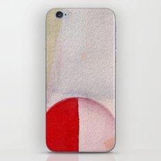 Subtleties iPhone & iPod Skin