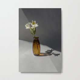Shadow and Flower #2 Metal Print