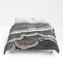 Turkey Tail Fungi Comforters