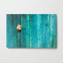 Snail On Aqua Metal Print