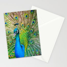 Beautiful Peacock (Color) Stationery Cards