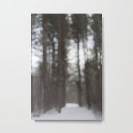 Ottawa, Ontario, Canada Metal Print