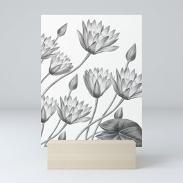 Water Lily Black And White Mini Art Print