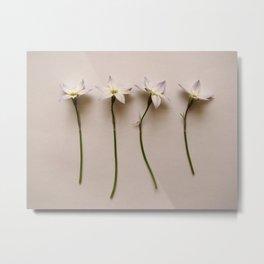 4 flowers Metal Print