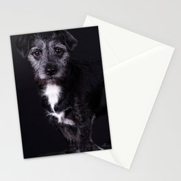 Pop the Dog Stationery Cards