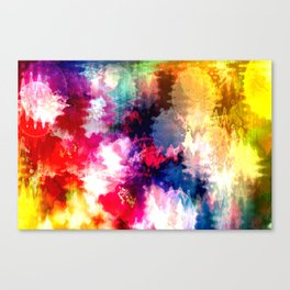 An explotion of color Canvas Print