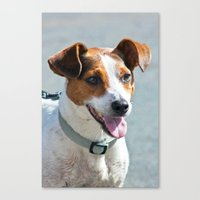 jack russell Canvas Prints featuring Jack Russell by Doug McRae