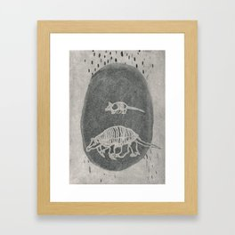 Armadillo Aqua Framed Art Print