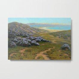 Monterey Dunes, Bush Lupine, California Coast by John Marshall Gamble Metal Print