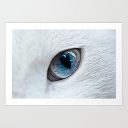 Eye of Cat Art Print