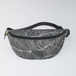 Inverted Echo Fanny Pack