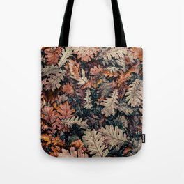 Autumn Leafs Pattern (Color) Tote Bag