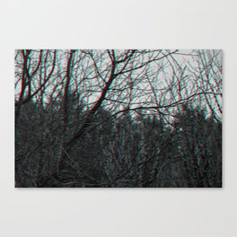 Norge Forest Canvas Print