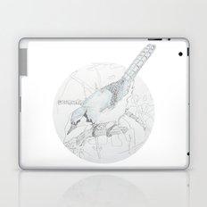 Cyanocitta cristata Laptop & iPad Skin