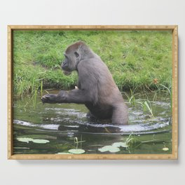 Gorilla Entering A Small Lake Serving Tray