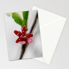 Red peach blossom Stationery Cards