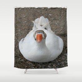 White Wild Duck Sitting on Gravel Shower Curtain