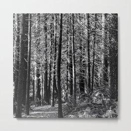 In The Sticks Metal Print