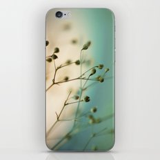 strange attractors iPhone & iPod Skin