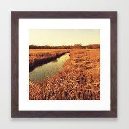Marsh Land Framed Art Print