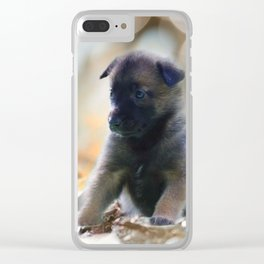 Beautiful puppies in autumn leave Clear iPhone Case