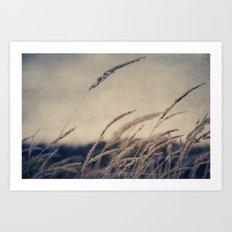 Subtle Wind Art Print