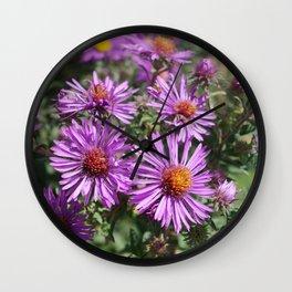 Autumn Amethyst - New England Aster flowers Wall Clock