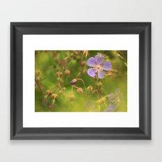 Wild Geranium 3900 Framed Art Print