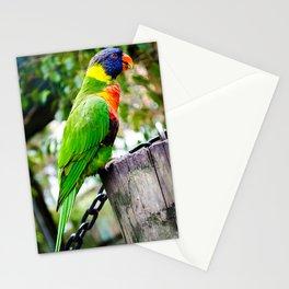 Lorikeet Stationery Cards